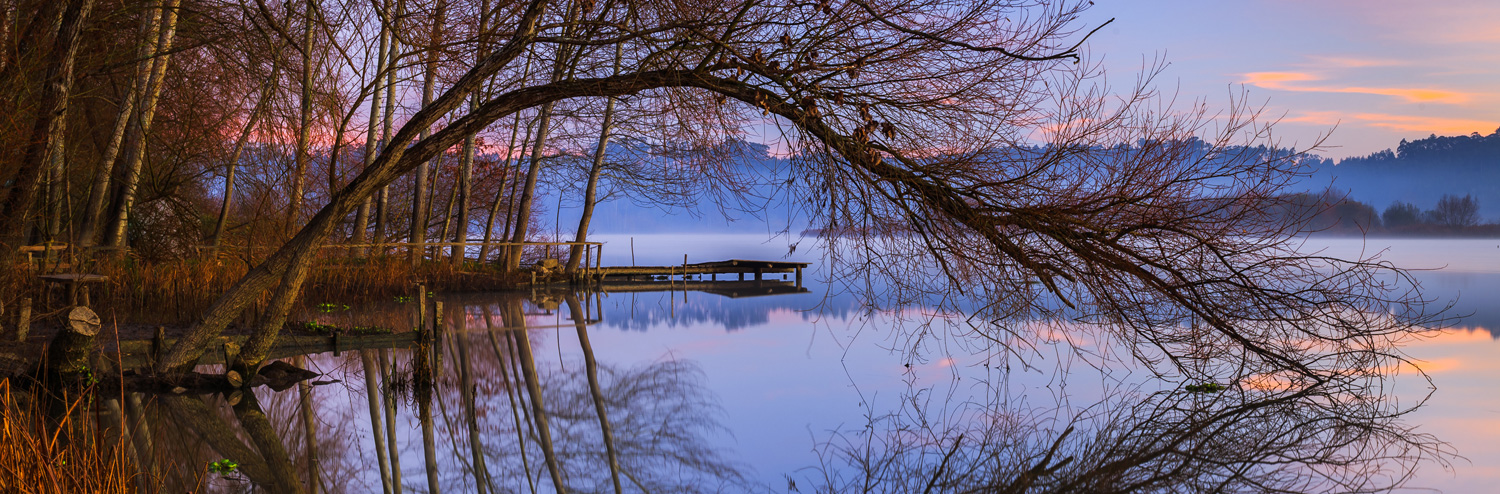 Landscape-Reflections-Lake-Trees-Jetty